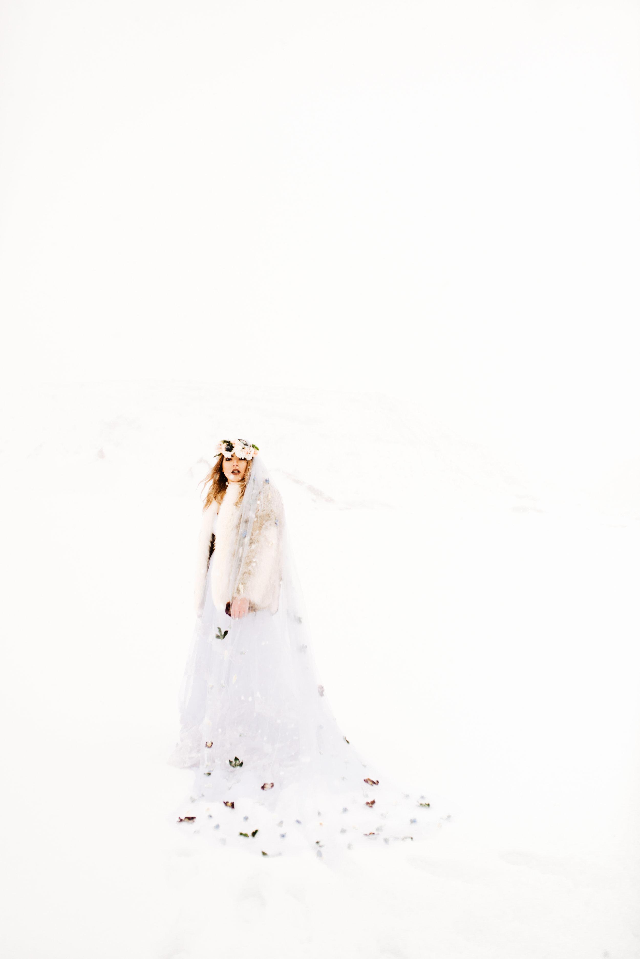 ShelbyTaylorPhotography-94.jpg