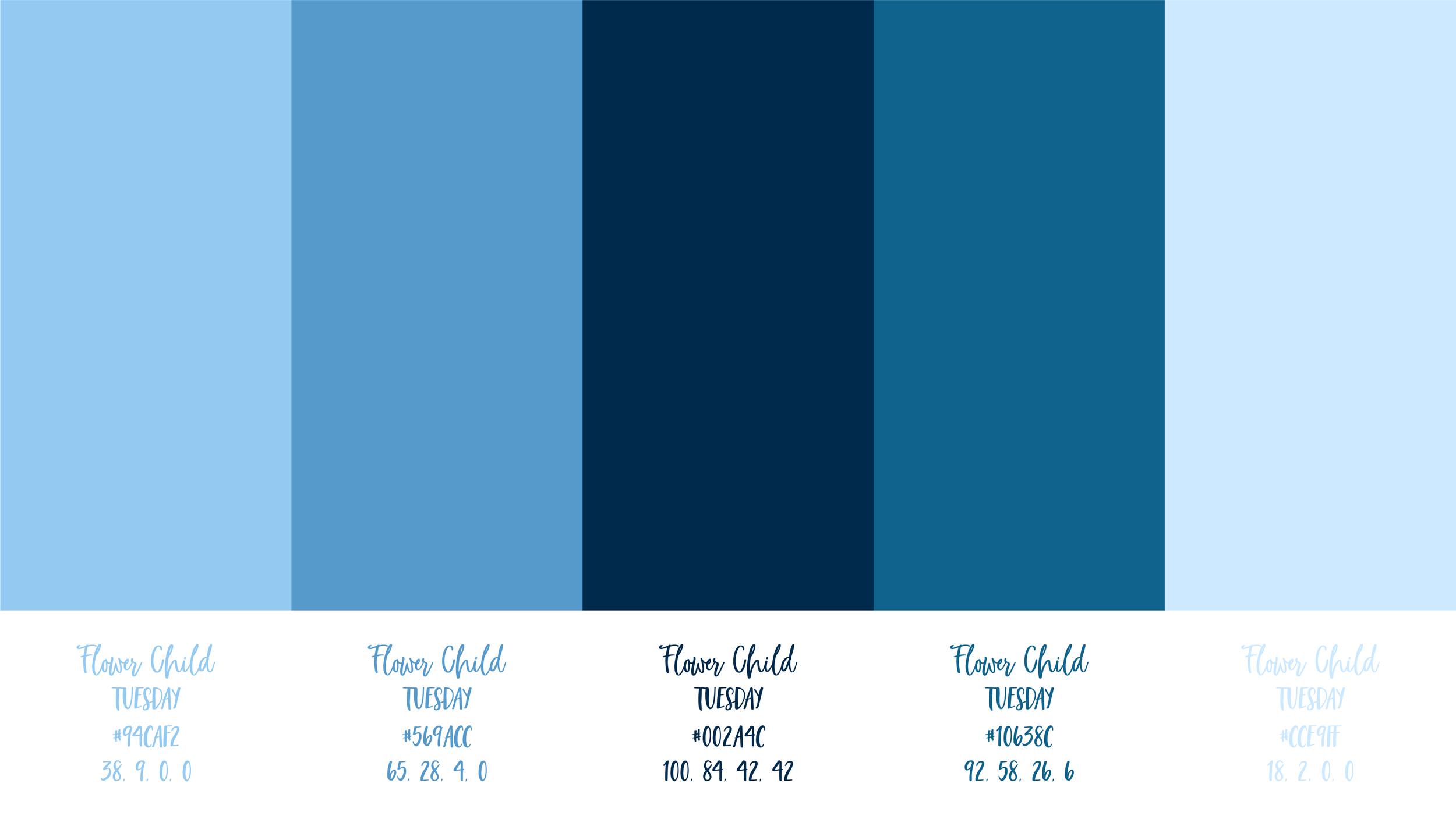 Color Palette_Blue Palette.png