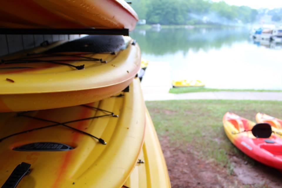 SUP boards photo.jpg