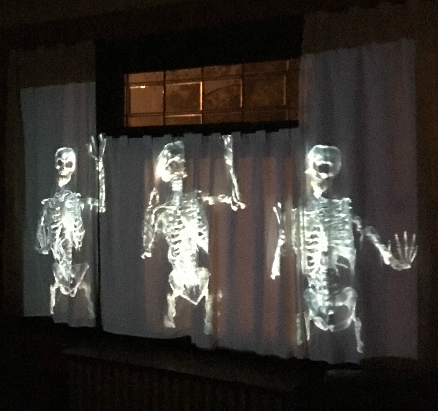 Digital projections are the way to go