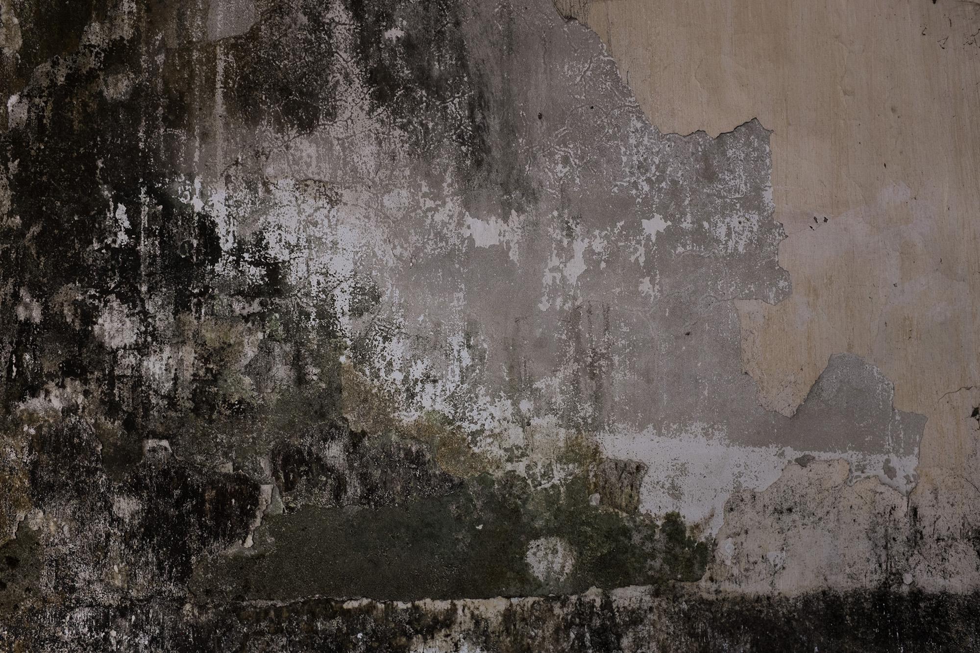 A peeling wall.