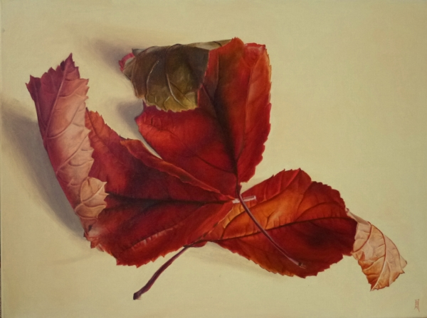 Betty Anderson  'Autumn Leaves'