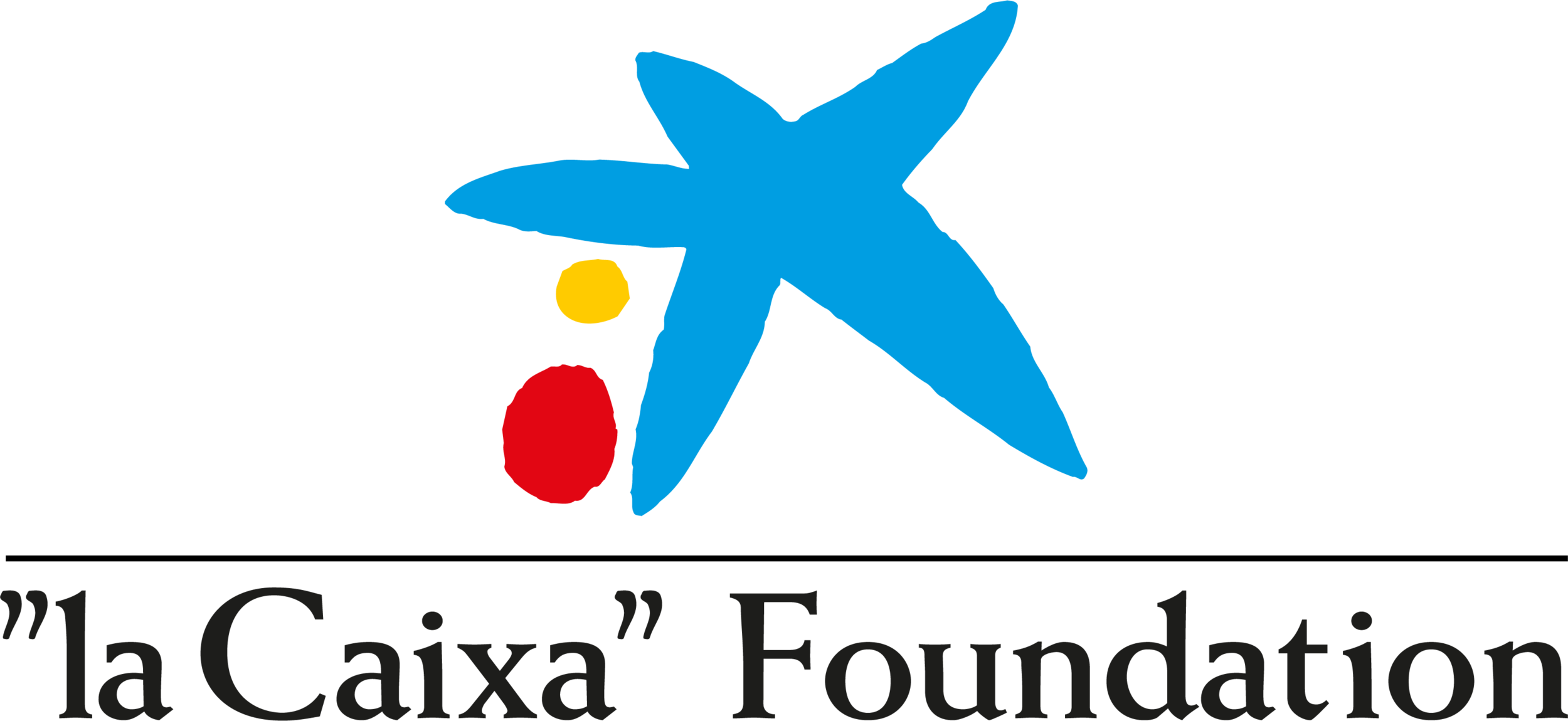 laCaixaFoundation.png