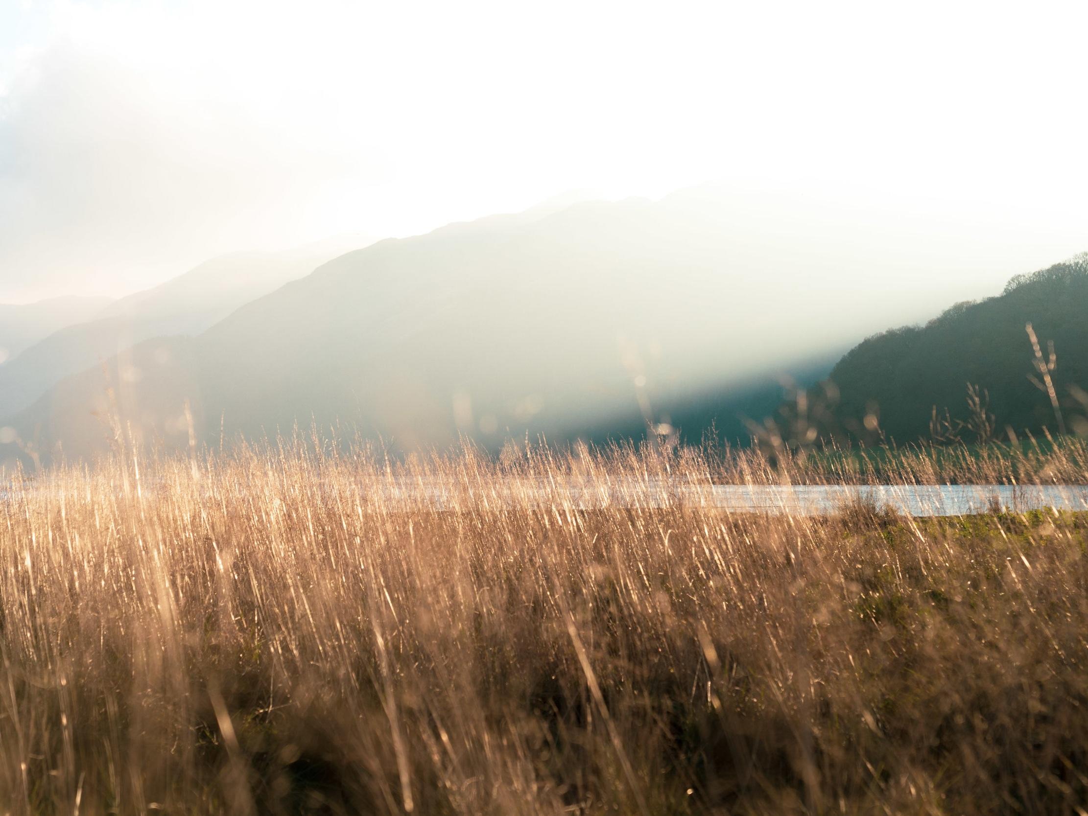 Argyll Secret Coast, Scotland
