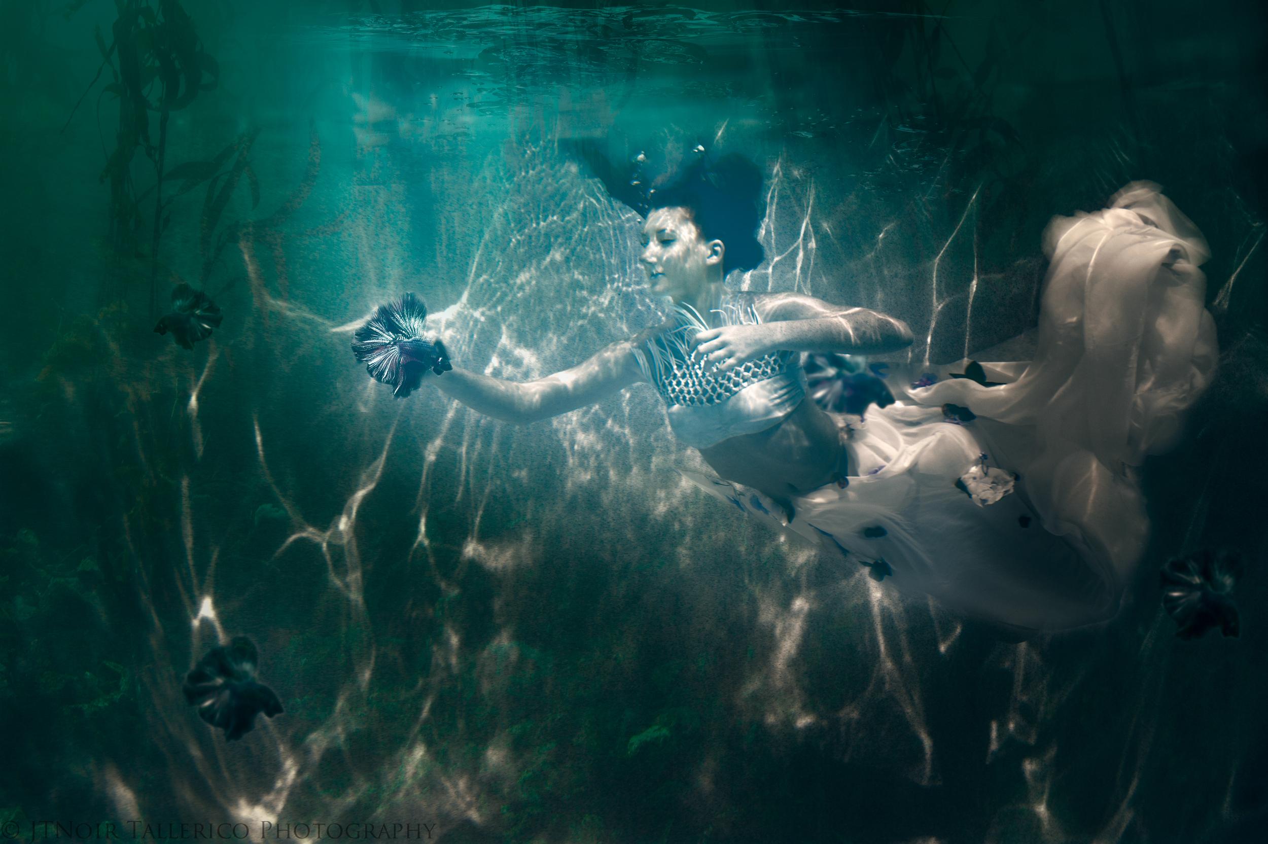 Tallerico_Photography_Underwater_KW_7_2014--4.jpg