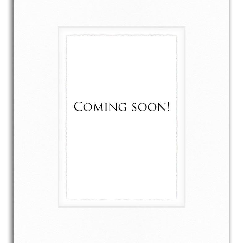 Website_Resourcescoming soon_JenniferTallerico.jpg