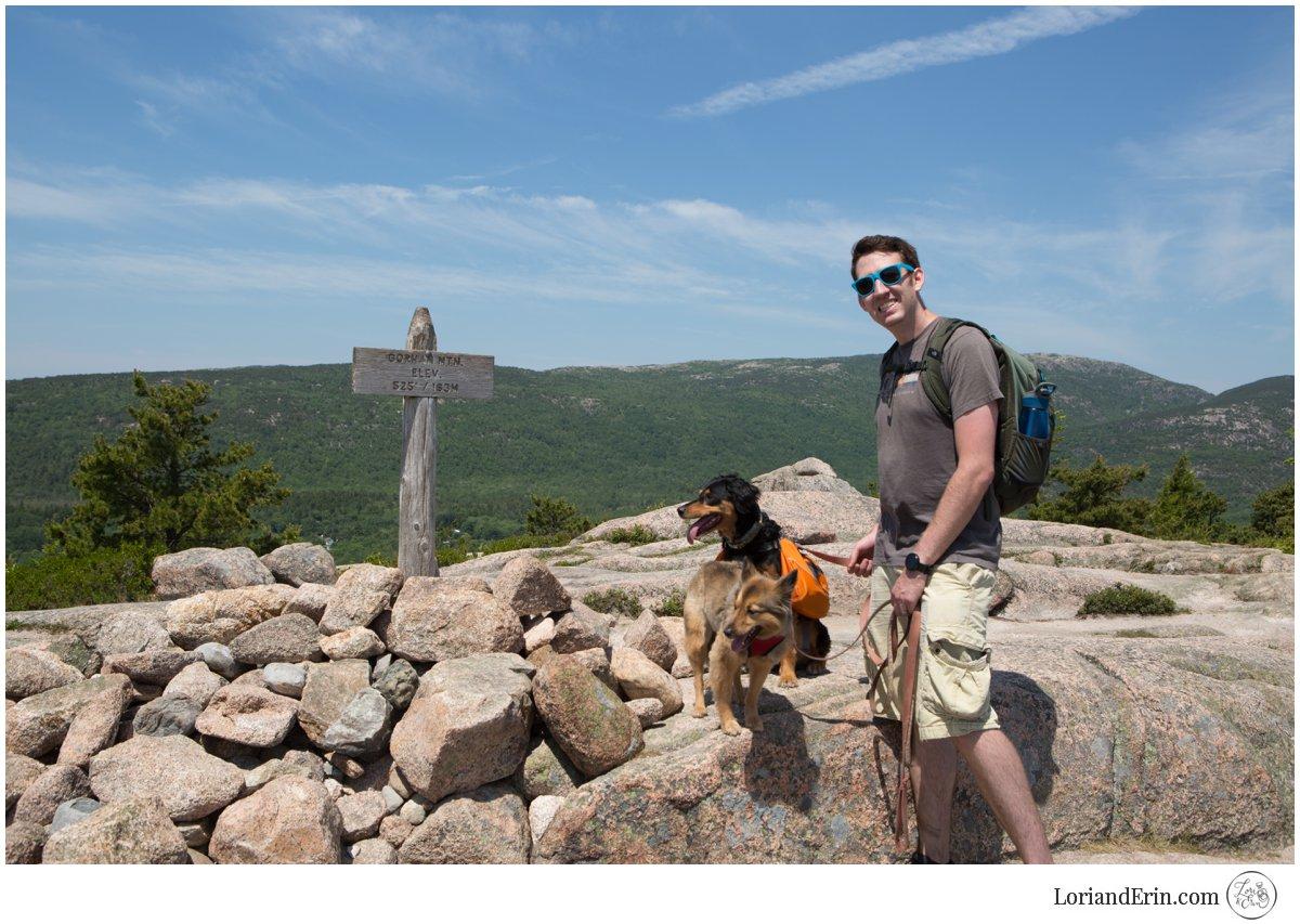 Puppies first summit!