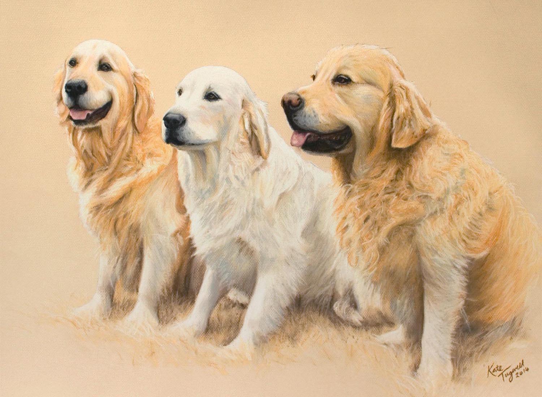 Dog-Portrait---3-Golden-Retrievers-1500x1100.jpg