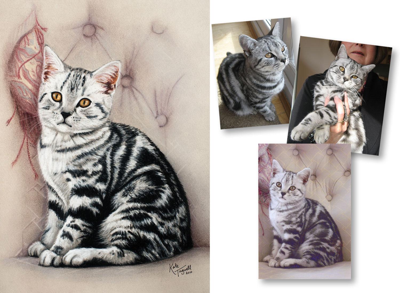 Cat-portrait---Jazy-1500x1100.jpg
