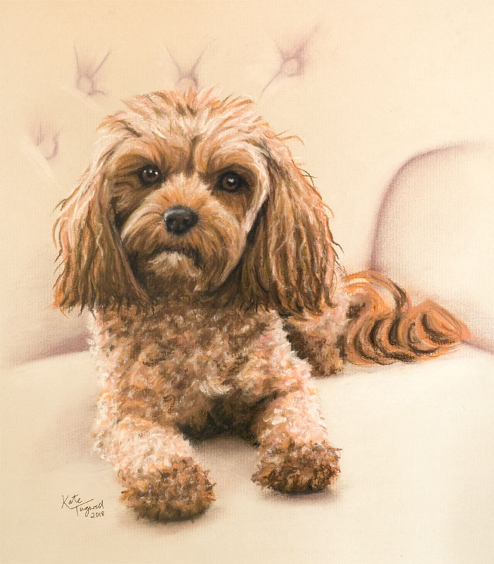Dog-Portrait---Pastel-Belle-for-Colette-2018.jpg