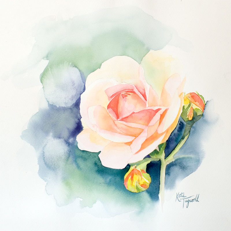 Art-for-sale---Rose-watercolour-square.jpg