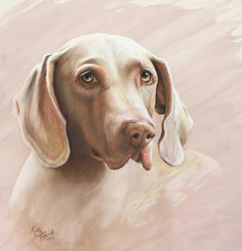 Dog-portrait-Shona-pastel-50x51cm.jpg