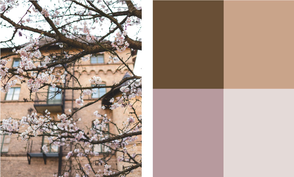 photograph_spring_colours_composition_framkalla_App
