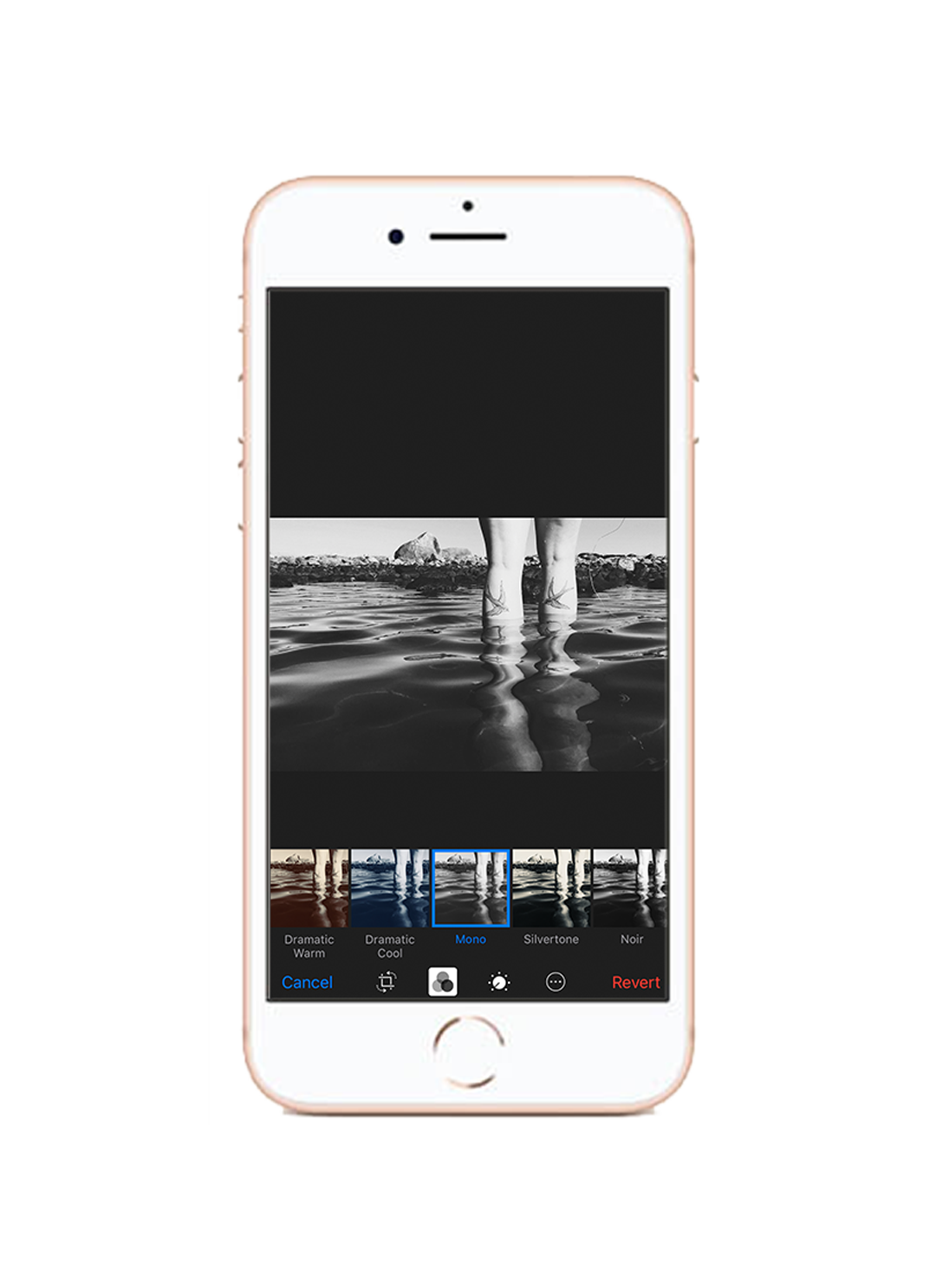 3. Choose filter - Choose the filter you like the most, then apply the same on all your photos.