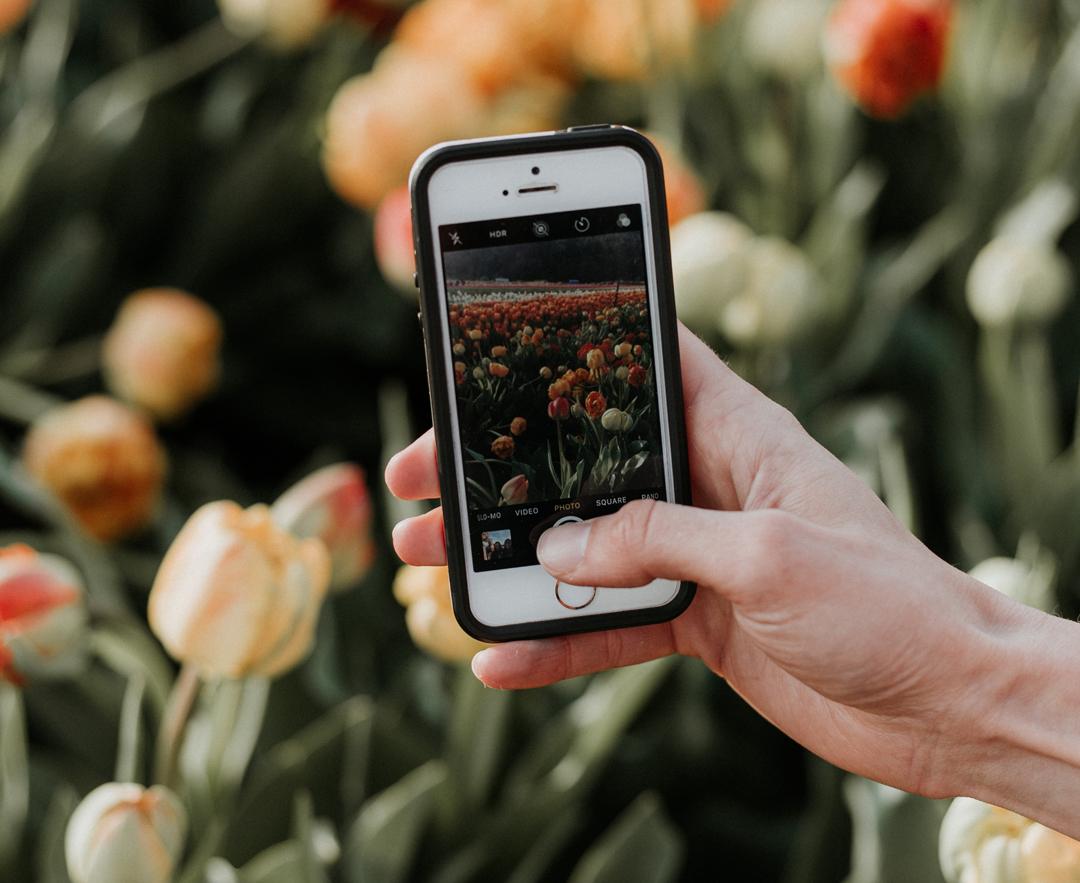 photograph-spring-iphone-photo-tips-framkalla.jpg