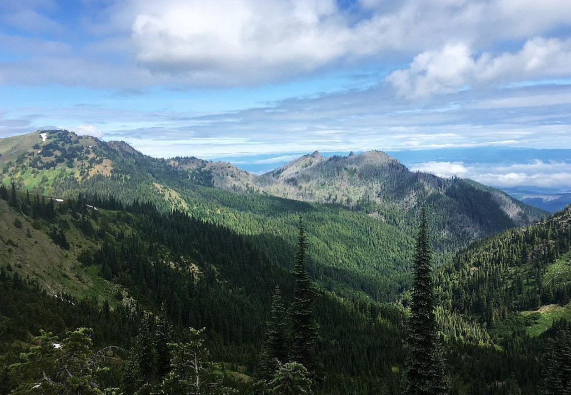 The calm of Olympic National Park hours before the panic storm.