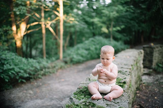thank you @rosecoloredcreative for capturing sweet baby lou's curious spirit 💕🌱✨ || #sweetbabylou #frickpark #letthembelittle