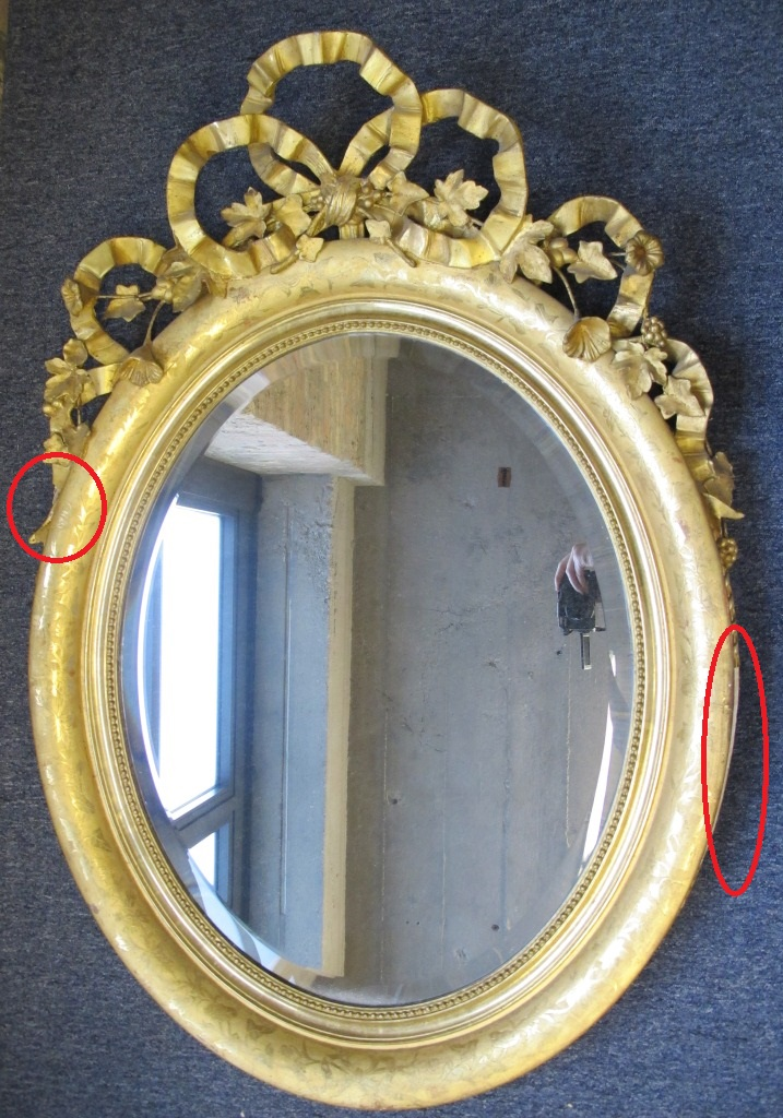 Before Treatment - note areas of damage circled in red.