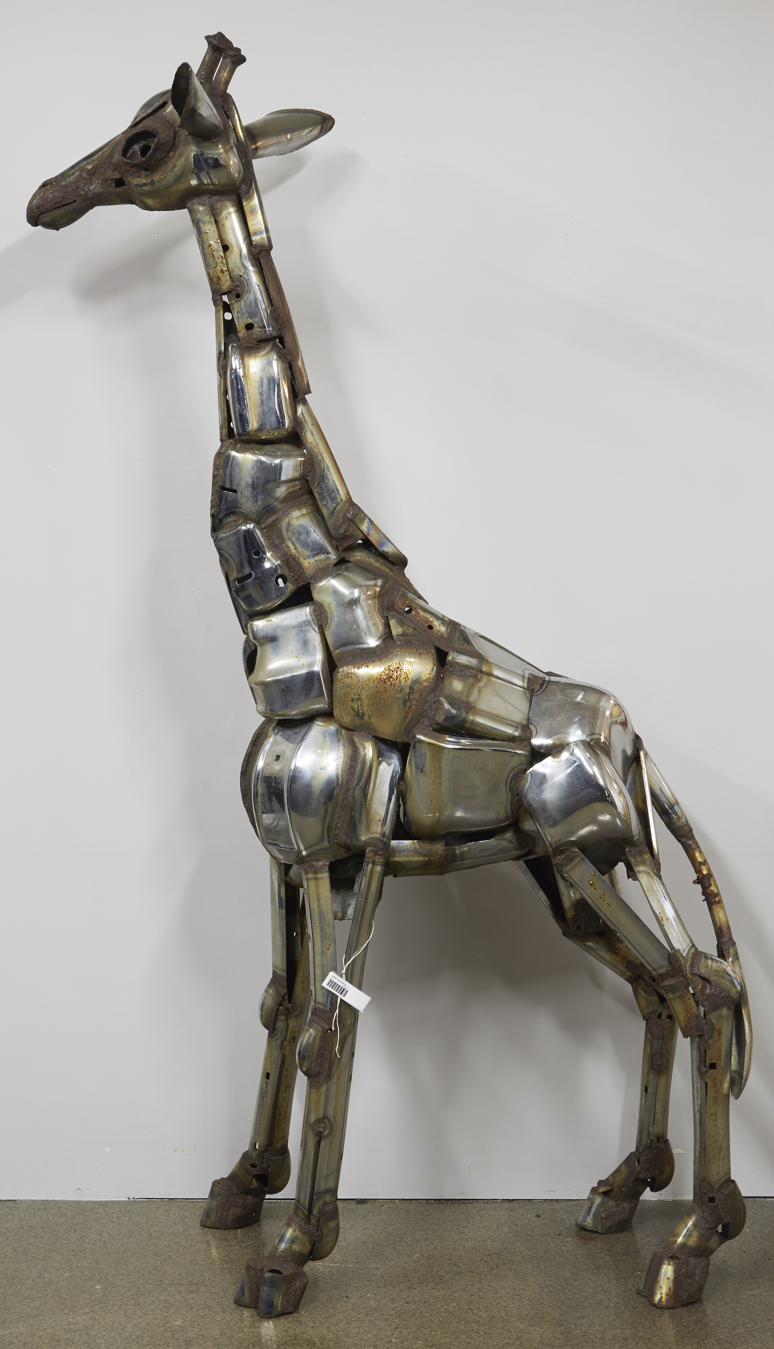 Giraffe , Jack Kearney - Before Treatment