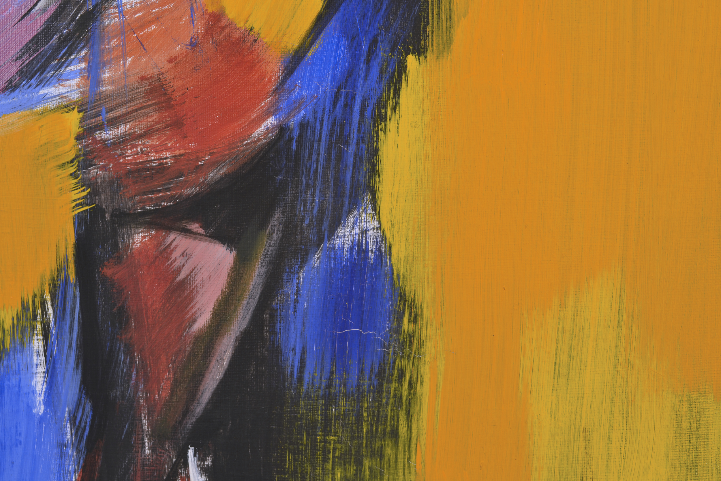 Detail of micro-cracks within the painting.