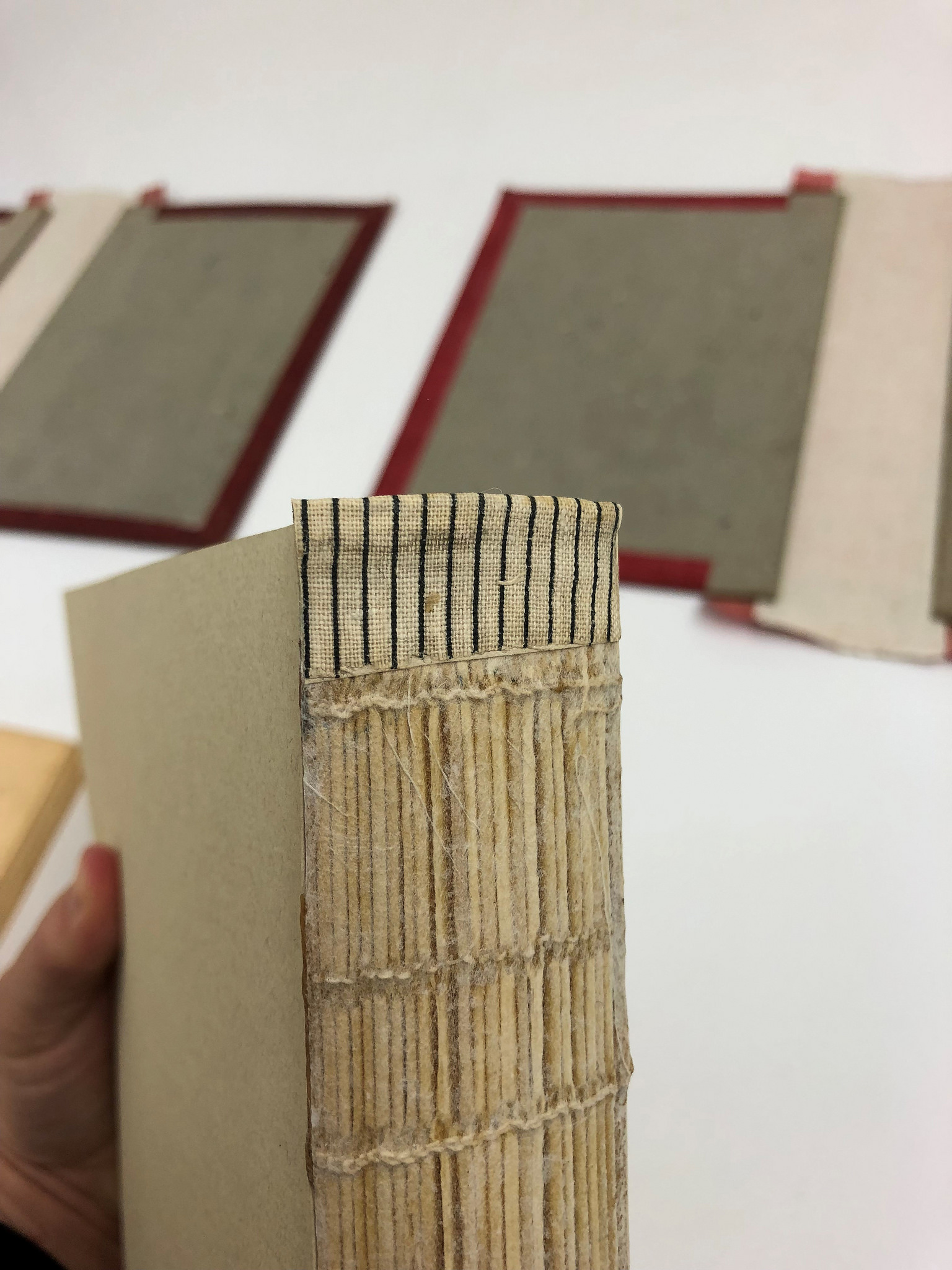 During Treatment - Reinforcing the textblock with linings and new hinging material