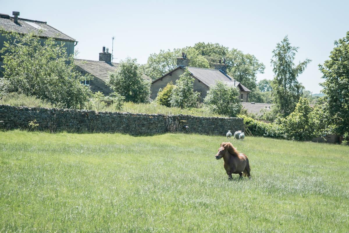 yorkshire farming photography - leeds wedding photographer (33 of 221).jpg