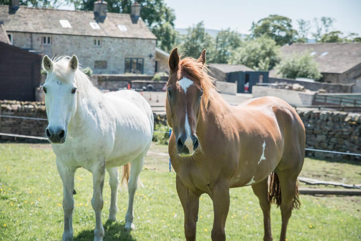 yorkshire farming photography - leeds wedding photographer (66 of 221).jpg