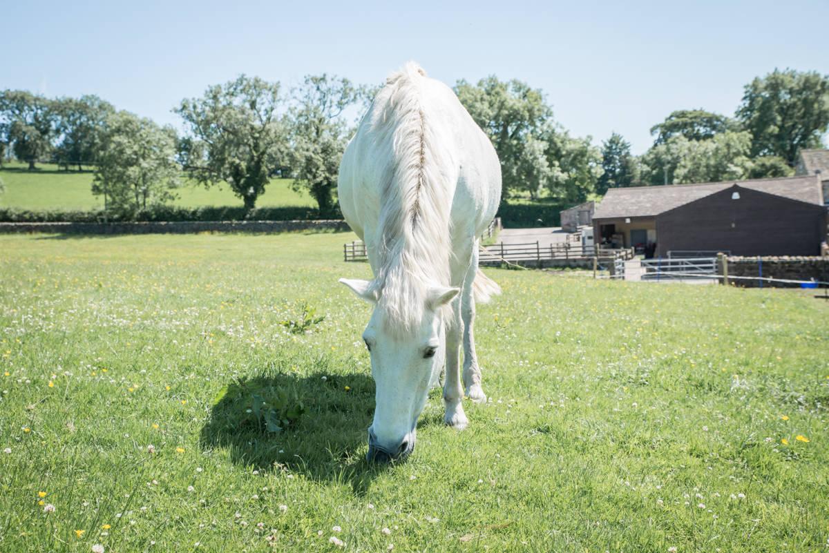 yorkshire farming photography - leeds wedding photographer (80 of 221).jpg