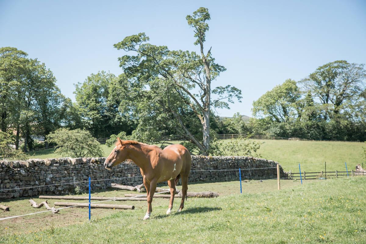 yorkshire farming photography - leeds wedding photographer (86 of 221).jpg