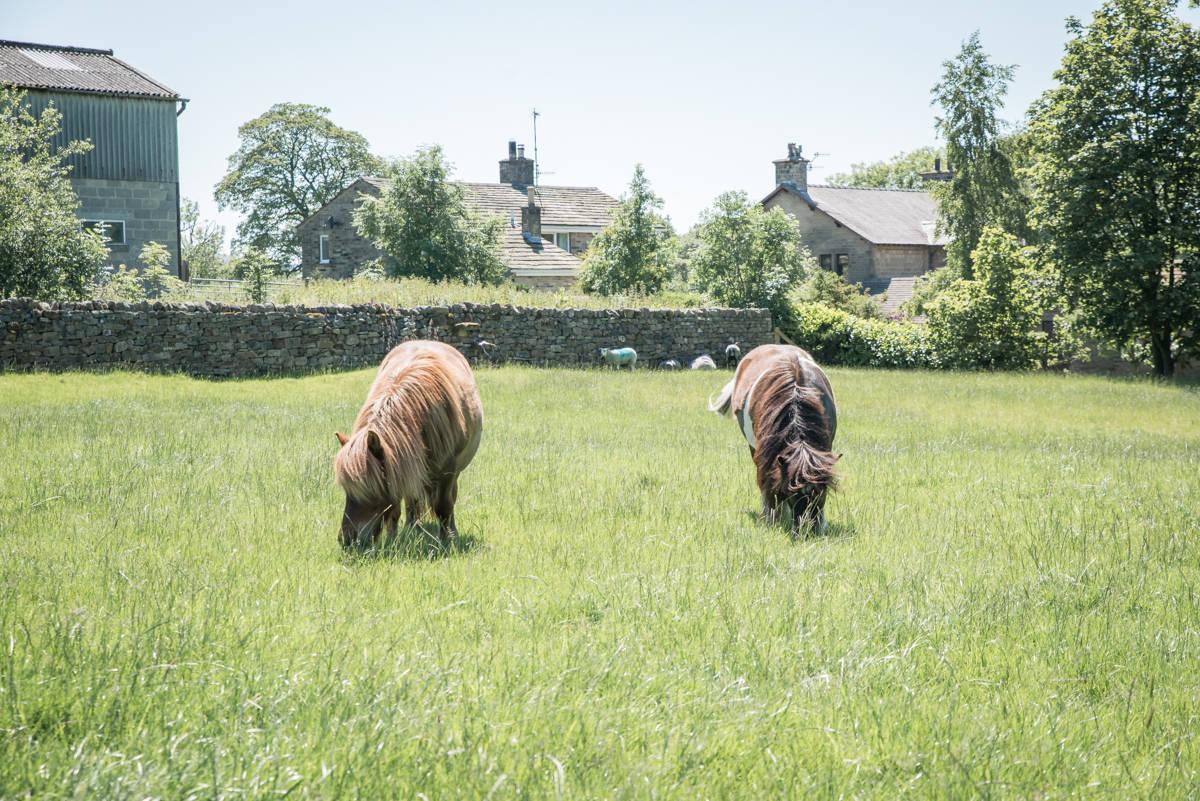 yorkshire farming photography - leeds wedding photographer (96 of 221).jpg