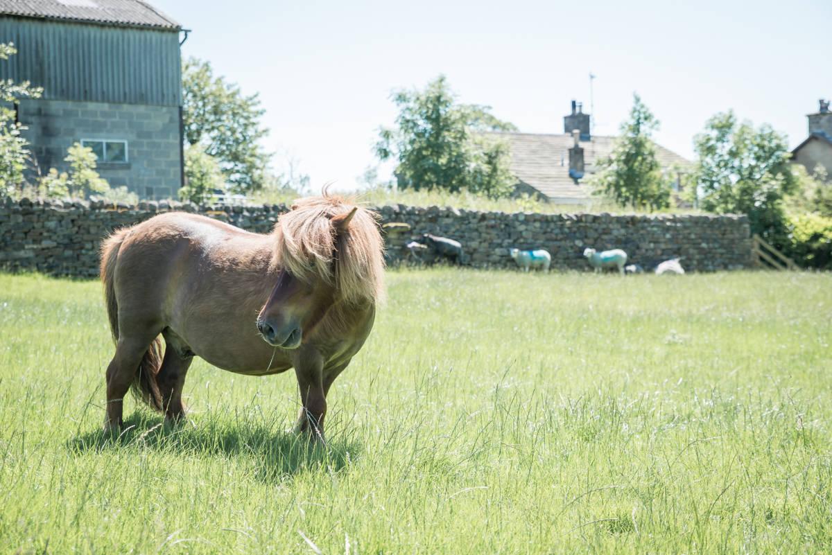 yorkshire farming photography - leeds wedding photographer (112 of 221).jpg