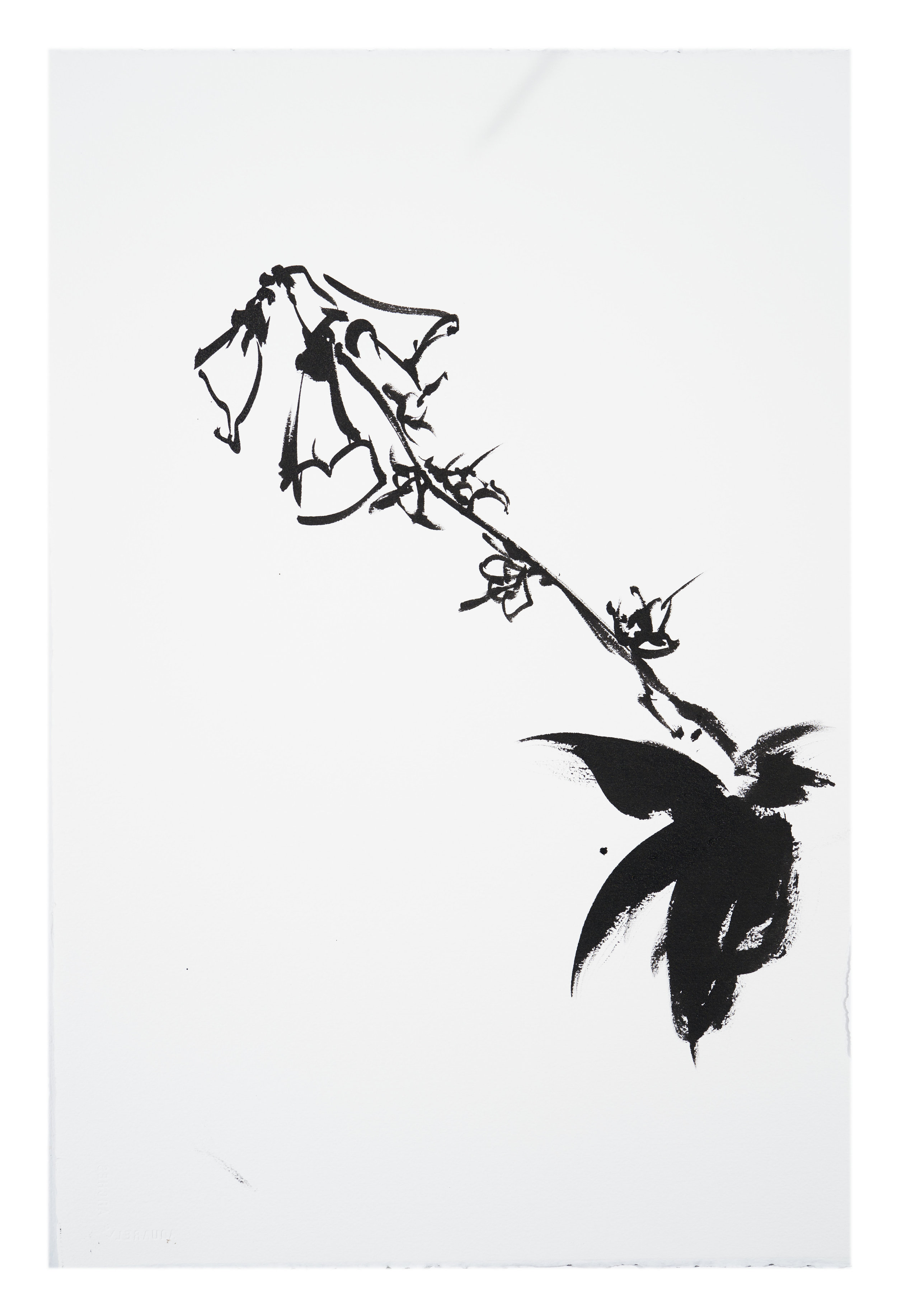 Botanical Study - Foxglove #6