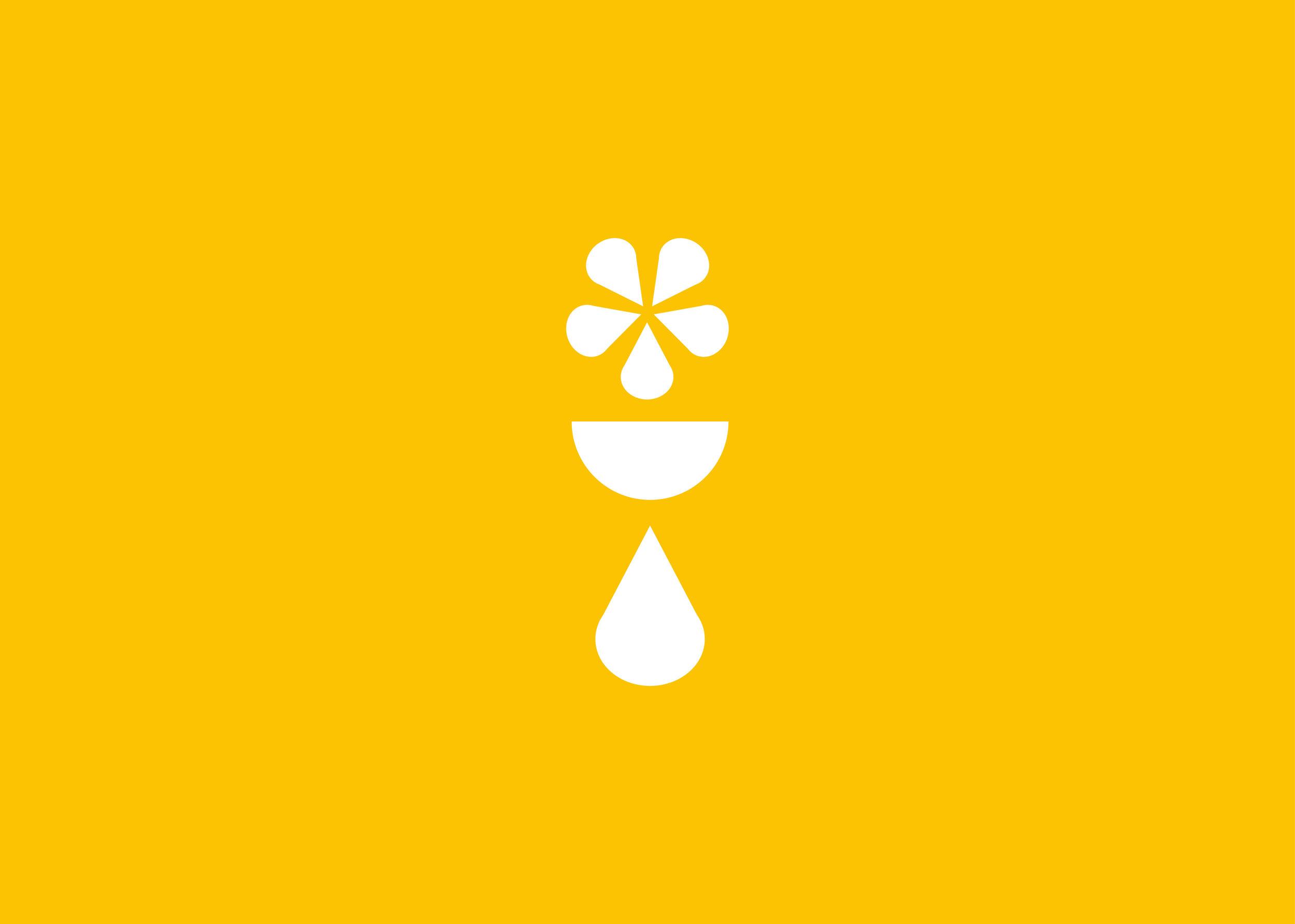 Bodi Logo mockup-01.jpg