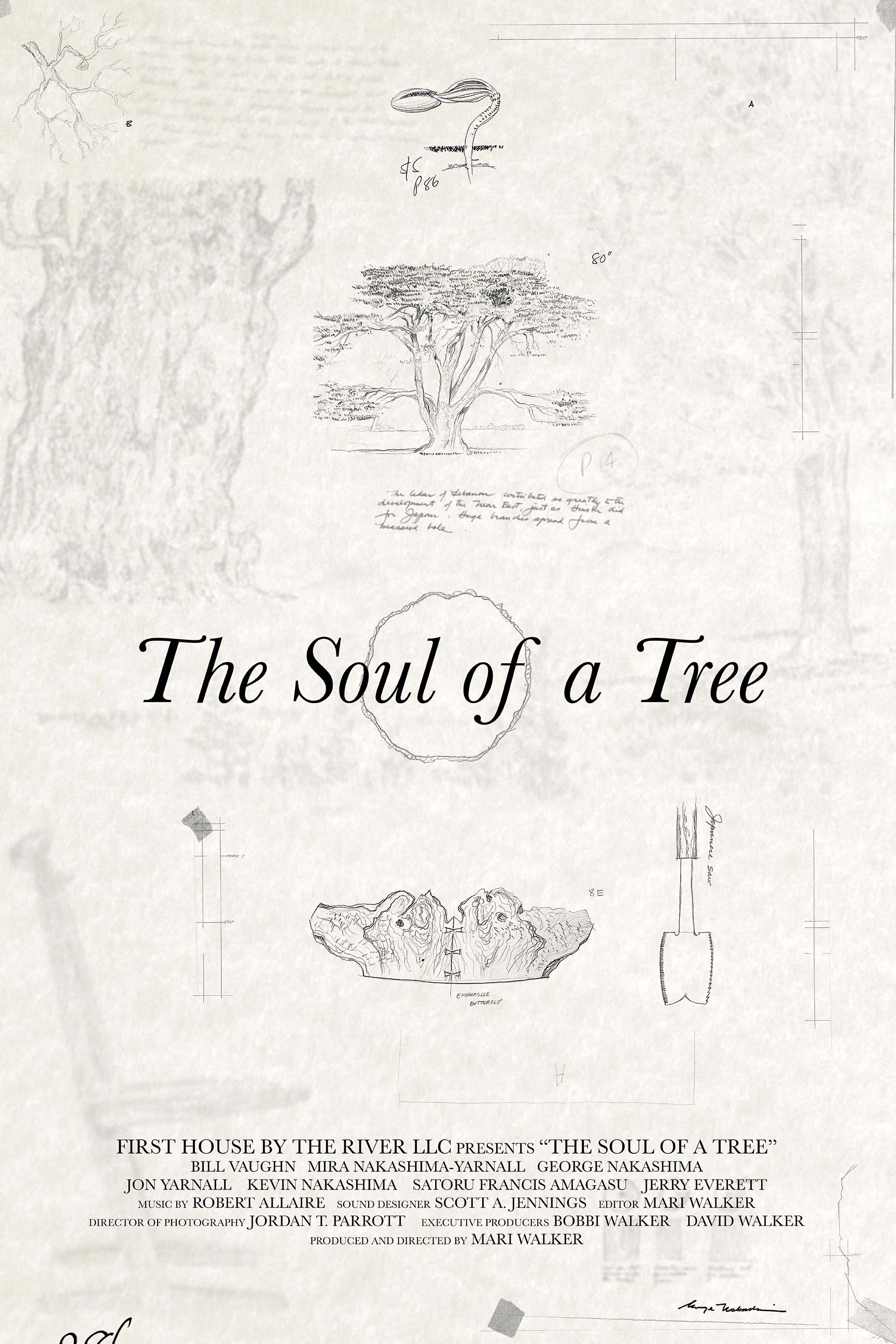 The Soul of a Tree Poster v5.jpg