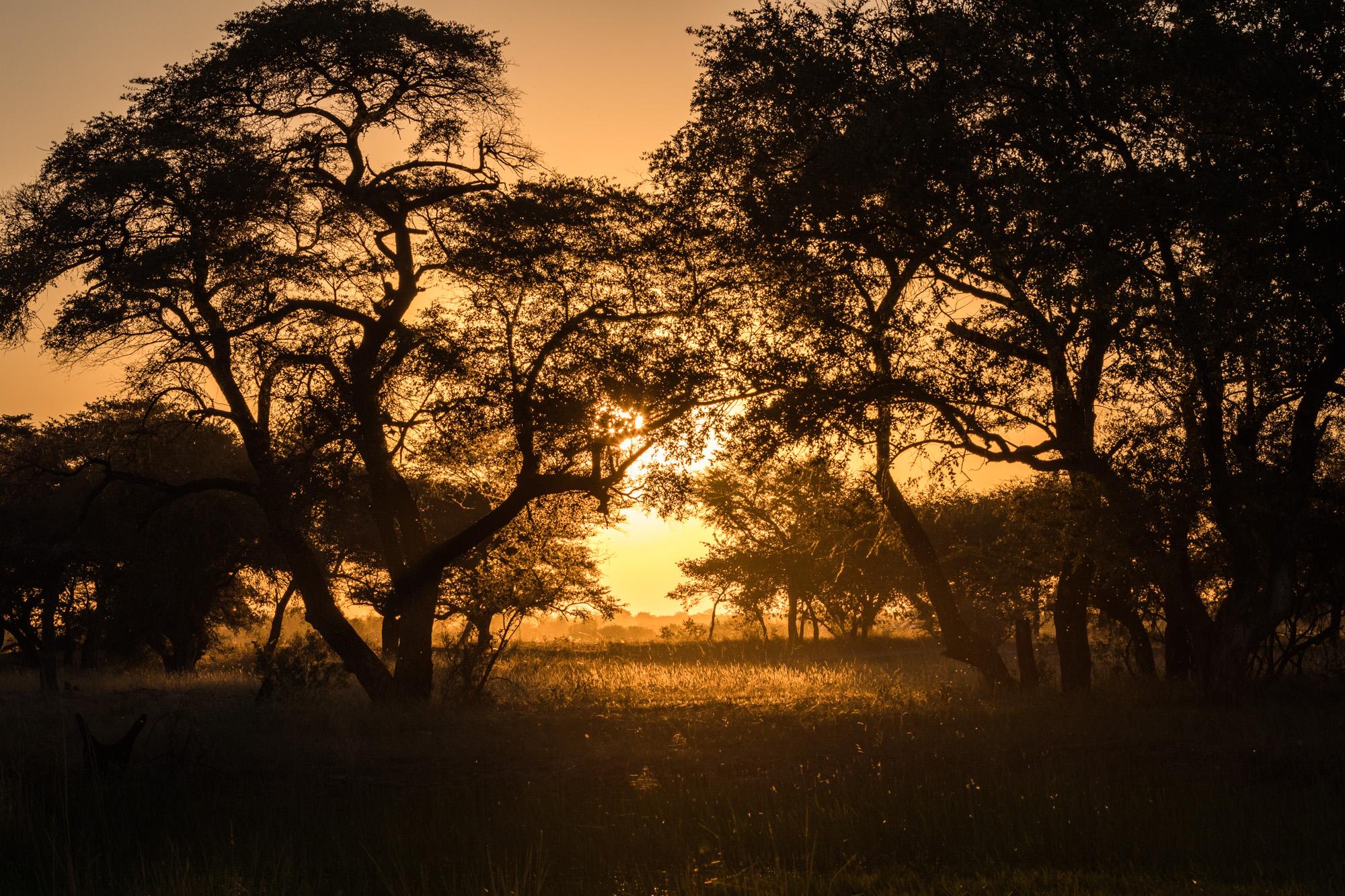 Nambia 2018-0315.jpg