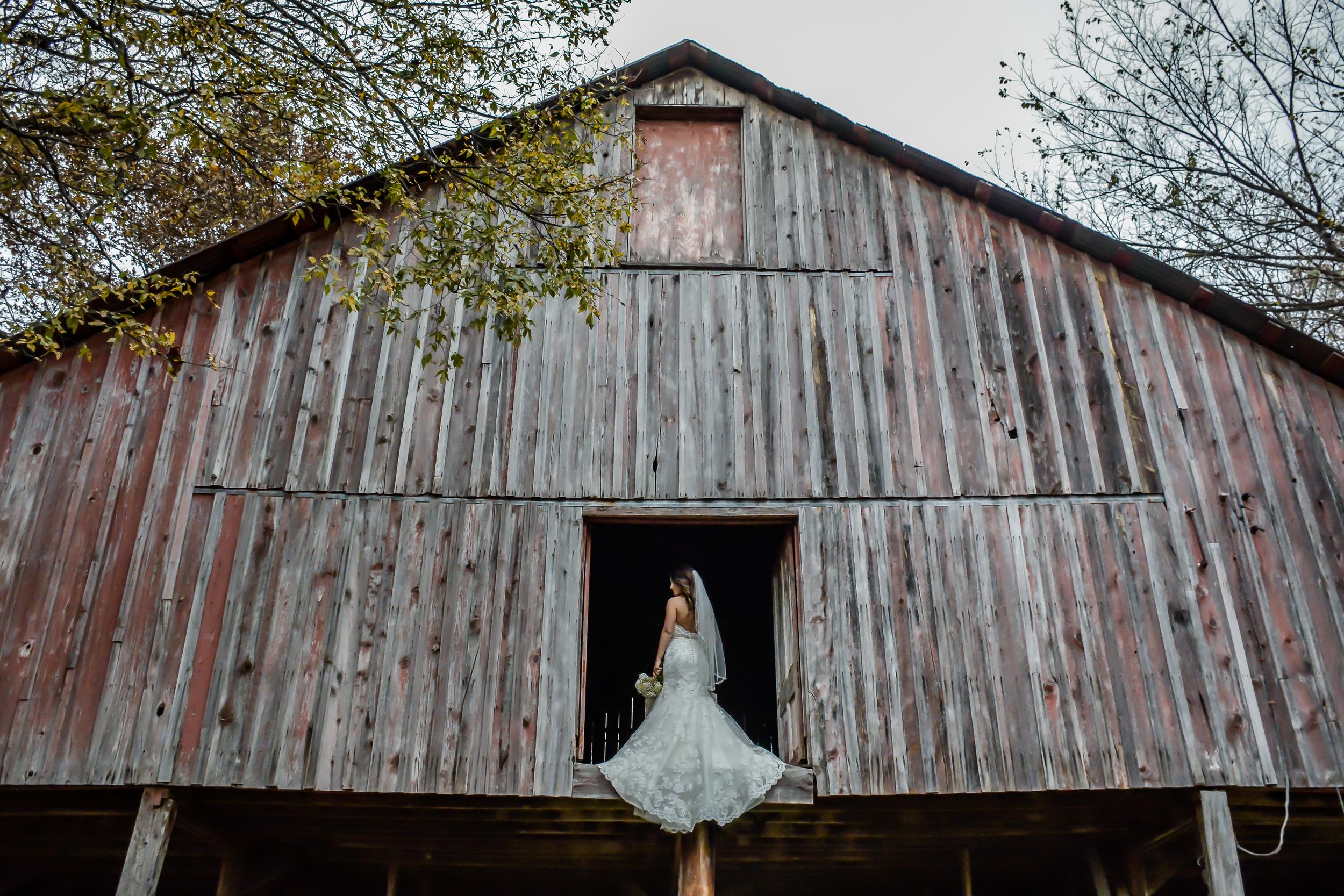 Taylor_wedding_portraits (74 of 137).jpg