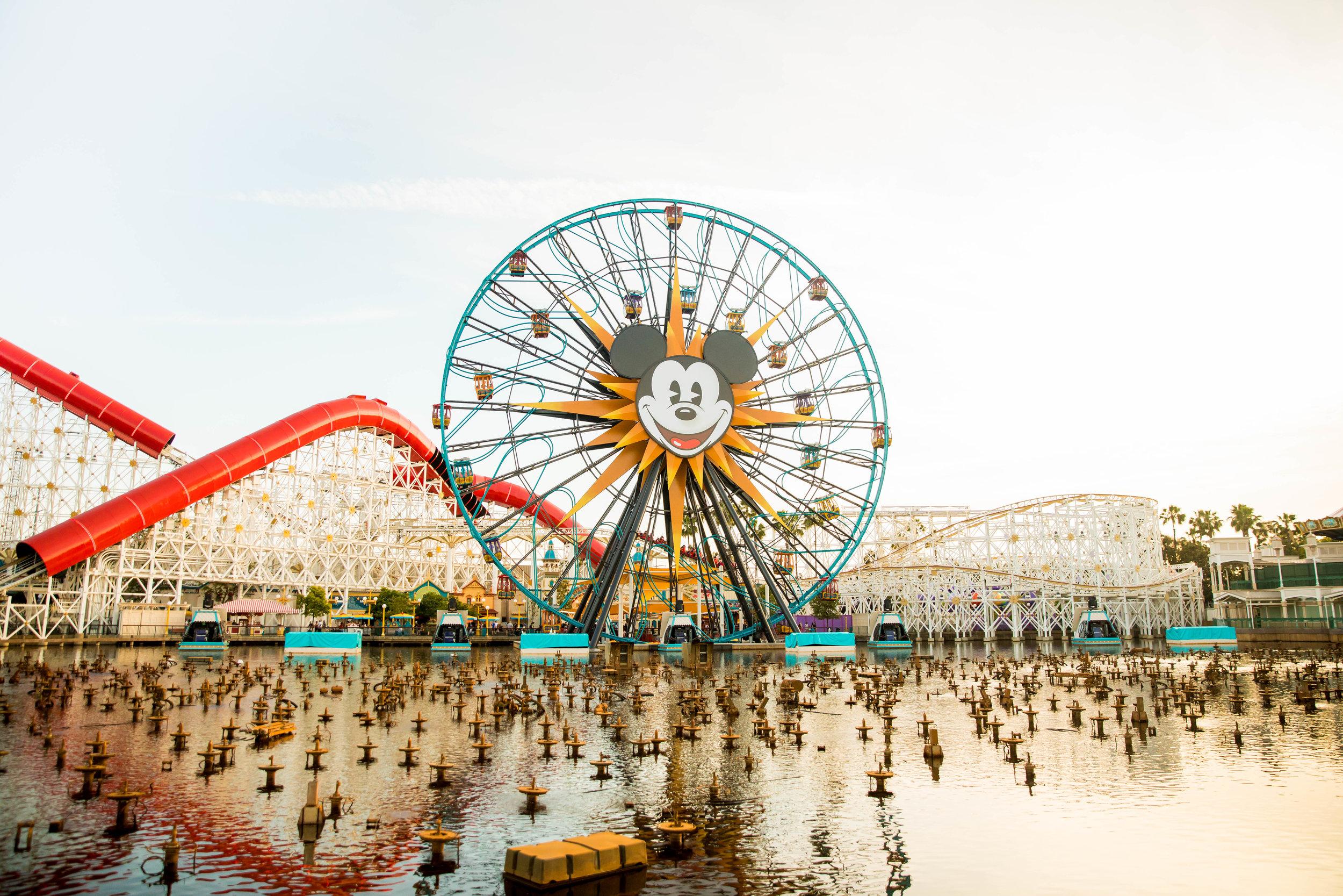 DisneylandPhotographer-SarahBlockPhoto-216.jpg