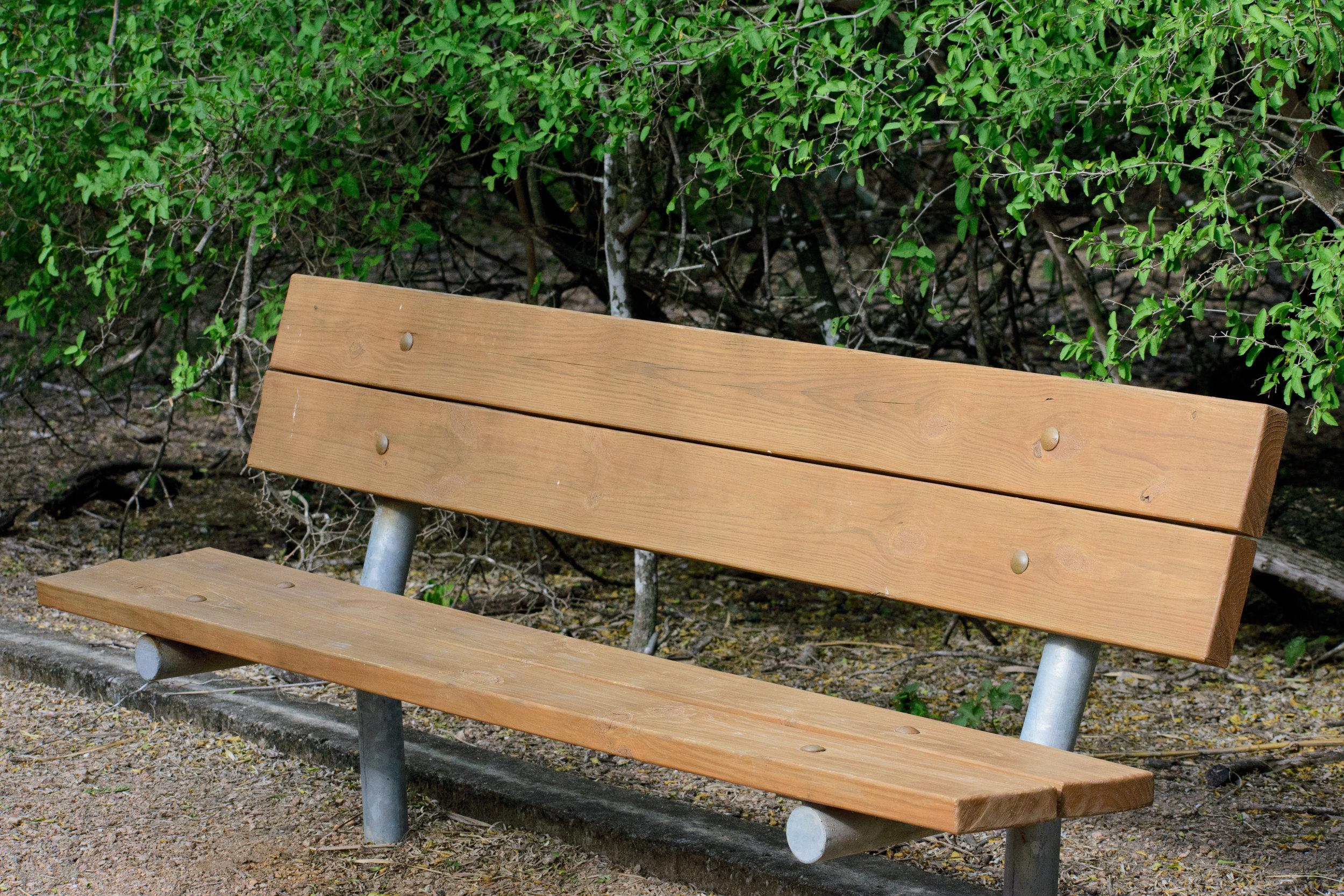 bench.jpeg