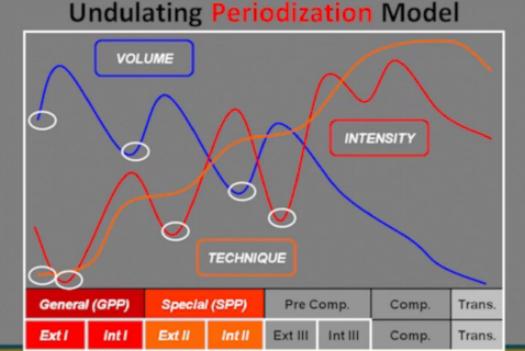 Undulating Periodization.PNG