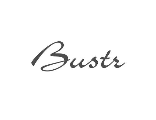 Bustr_grey.jpg