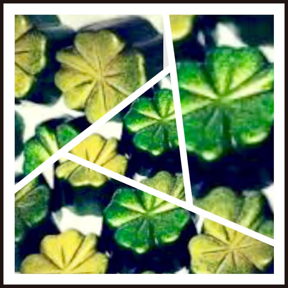 St. Patrick's day chocolates