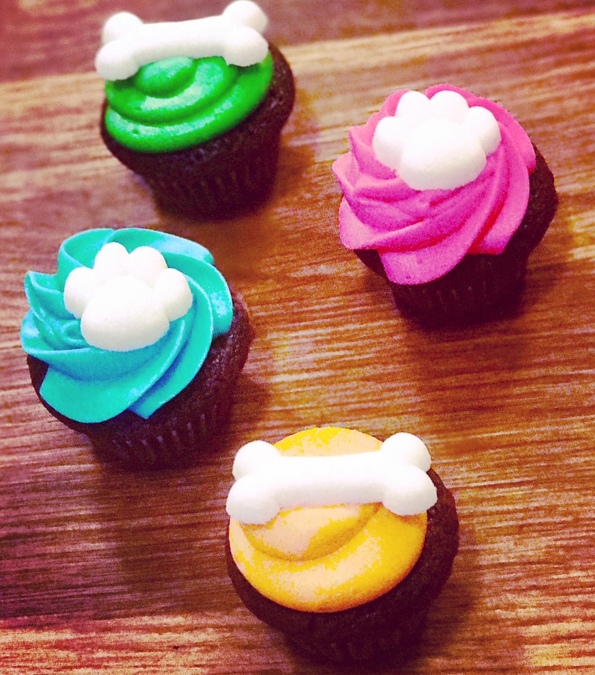 Pet Fundraiser Cupcakes