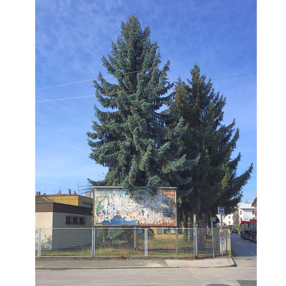 GK-Stand-Graz-2019-06.jpg