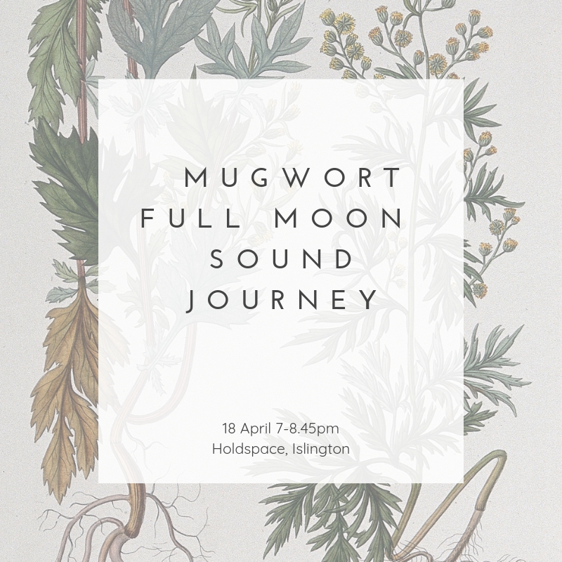 Mugwort Holdspace (2).jpg
