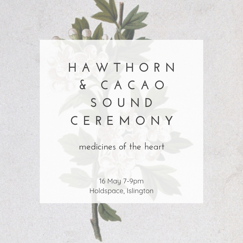 Hawthorn & Cacao Sound Ceremony with Louise Shiels