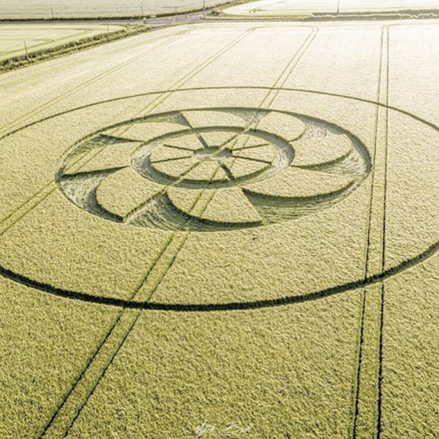 Solstice blessings fellow earthlings 💫💖💫💖💫 #summersolstice #cropcircle #galactivation
