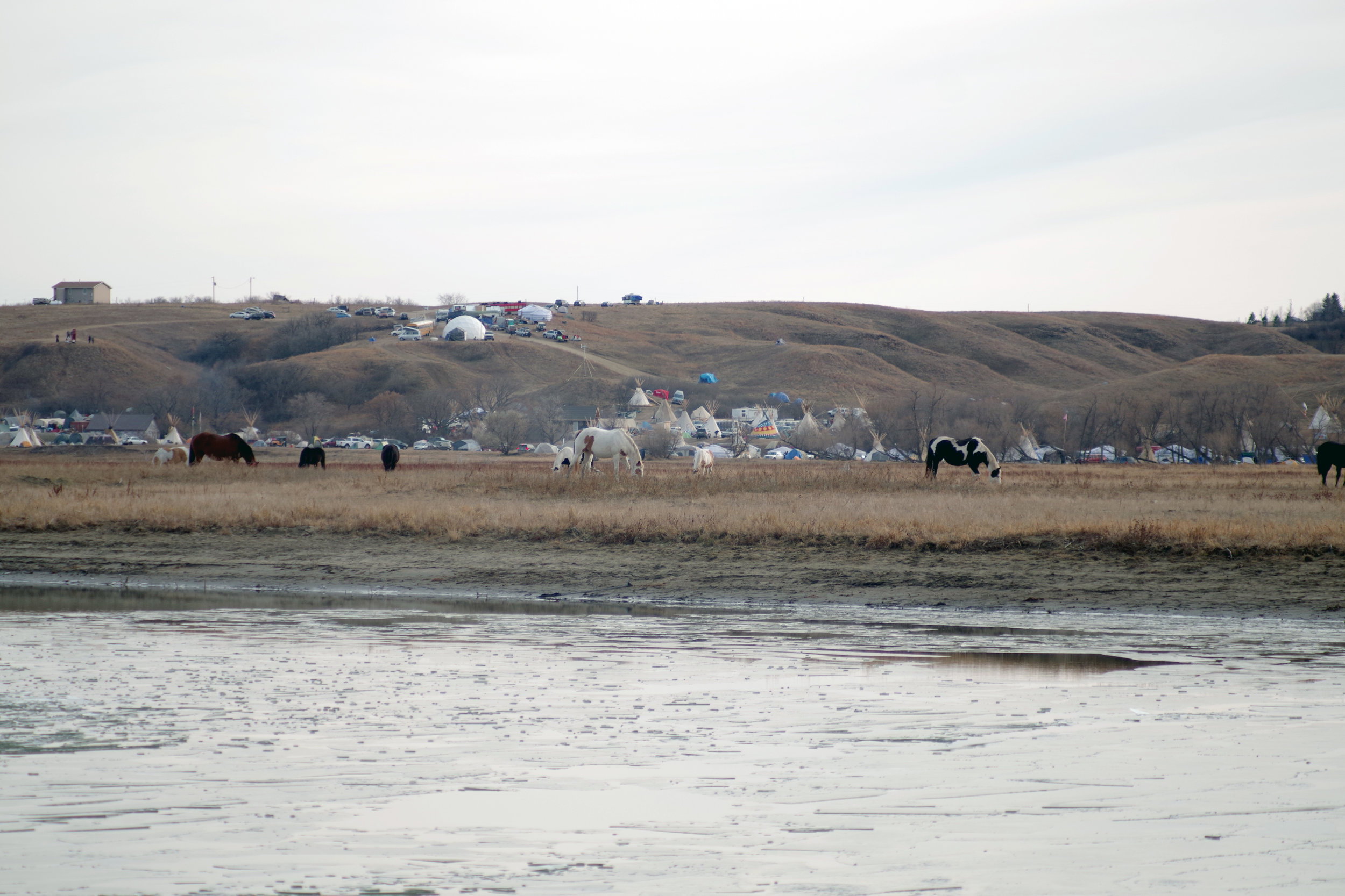 A view towards Sacred Stone camp from the river.