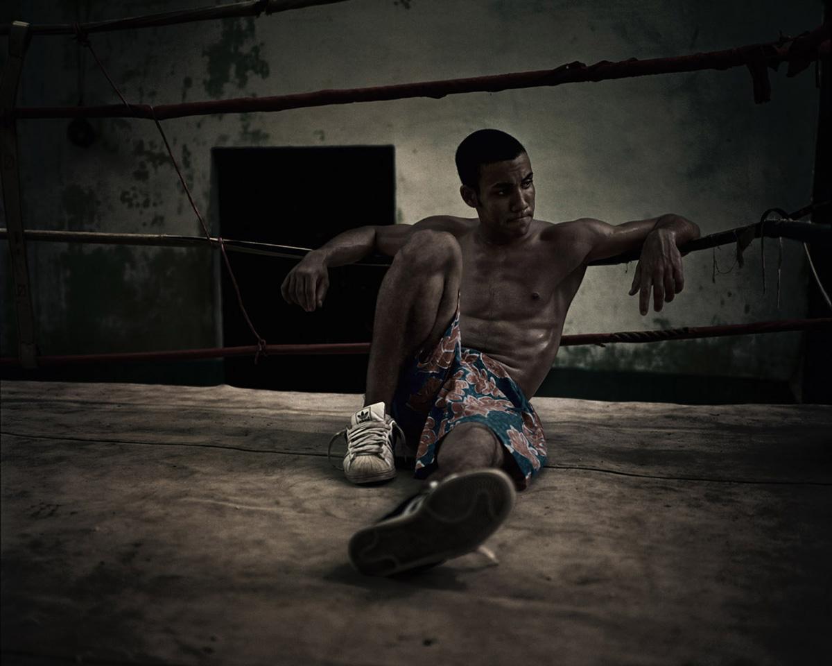 WebSave_Havana-Boxer-04.jpg