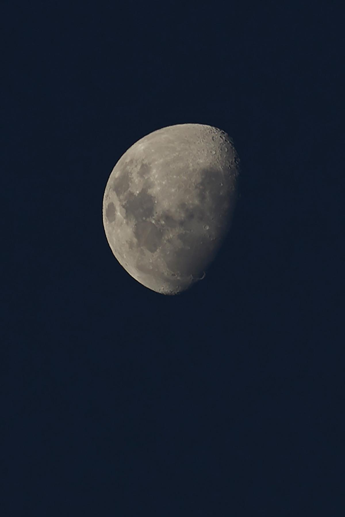 Sara-Mond-1084-MaraSommer.jpg