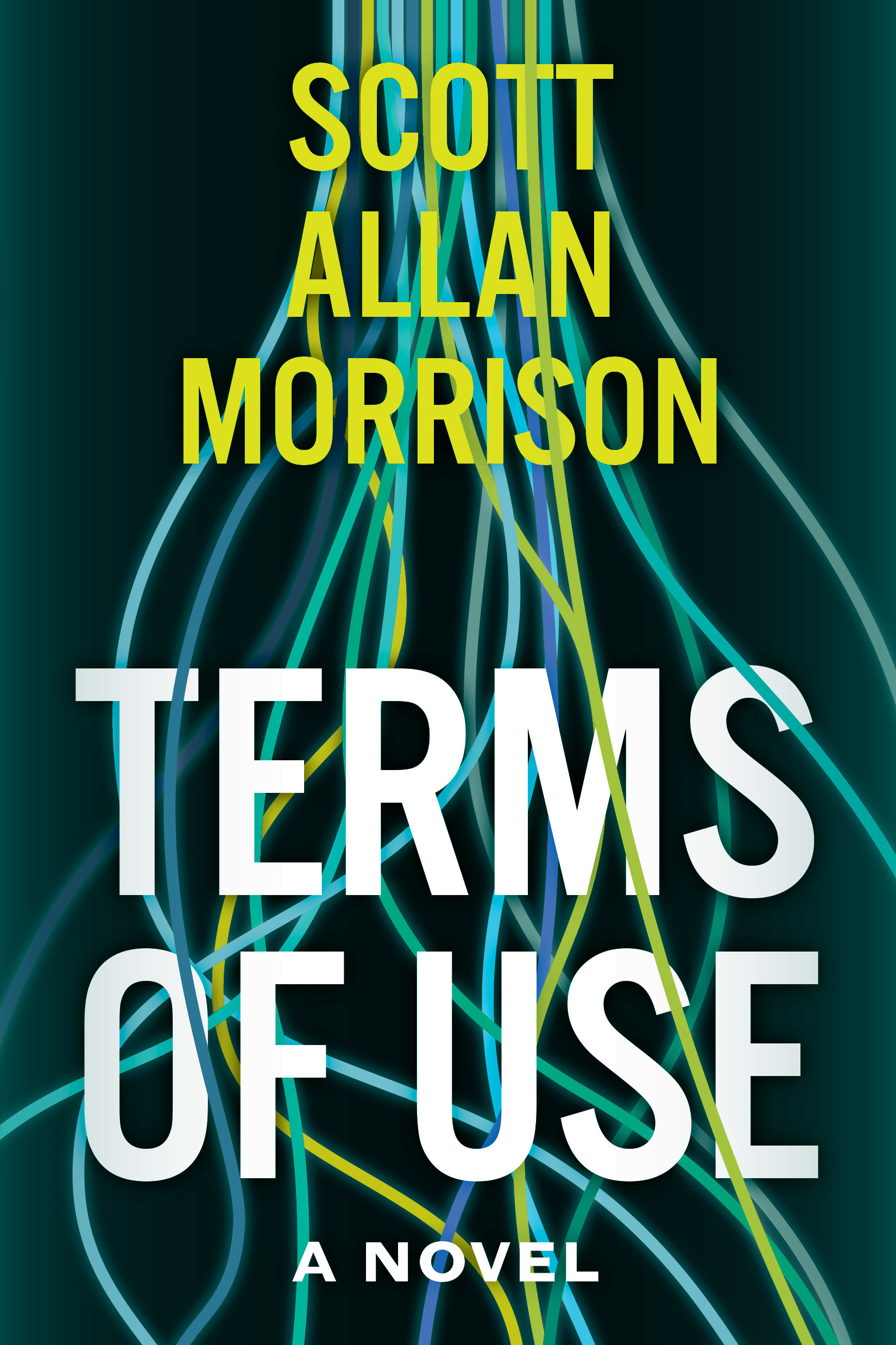 Terms of Use by Scott Allan Morrison